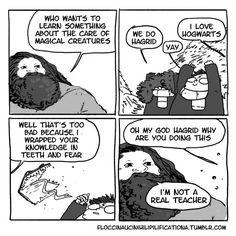 Why, Hagrid?!