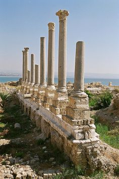 Al Mina, Tyre, Lebanon by iancowe, via Flickr