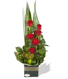Rendezvous  Dazzle someone special with Brilliance. This stunning boxed arrangement of long stemmed premium Roses elegantly set in tiers and presented with Bersilia Berry and Tropical Greenery will impress remarkably with its elegance and refinement.