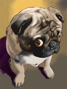 Cute Pug Print