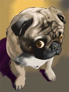 The guilty look....I know this pug look all too well, when my lil pug, Lemmy does uh-ohs, he makes this face haha