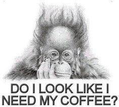 Coffee, Humor