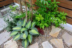 我が家のシンボルツリー シマトネリコ生長記 2013.5.17 - trivialnessⅡ Flower Beds, Garden Styles, Horticulture, Backyard Landscaping, Planting Flowers, Exterior, Canning, Landscape, Green