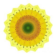 Happy sunflower mandala by kaye menner Mandalas Drawing, Digital Art Photography, Image Photography, Doodle, Sunflower Mandala, Shades Of Yellow, My Images, Colorful Backgrounds