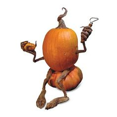 Pumpkin Vine Kit attach and position to a pumpkin as you desire. So cute!