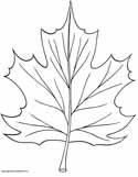 Free Autumn Coloring Pages, Printable and Worksheets to Print and Color. Online…