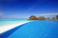Maldives infinity edge pool (dream destination!)