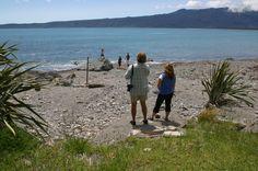 west coast ruggedness West Coast, New Zealand, Scenery, Adventure, World, Travel, Viajes, Landscape, Destinations