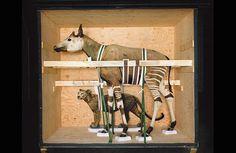¿QUÉ ES UN PLAN MUSEOLÓGICO? En tiempos de caos, la humanidad seguirá al hombre que tiene un plan... http://evemuseografia.com/2014/08/25/que-es-un-plan-museologico/