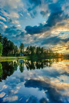 What reflection!   nature     reflections   #nature https://biopop.com/
