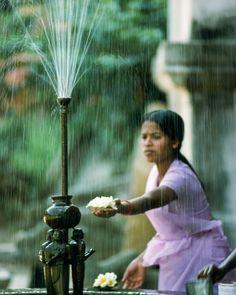 Water from a fountain in Sri Lanka rinses off the petals of a flower to be offered at a temple. Photo from my book #VanishingAsia #srilanka