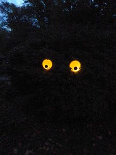 Styrofoam plates and LED candles make scary giant eyes in the dark.