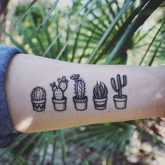 "28.4 mil Me gusta, 642 comentarios - Succulent City (@succulentcity) en Instagram: ""OBSESSED! via @naturetats⠀ Follow us @succulentcity ⠀ #succulentcity to be featured!! ⠀ #succulents…"""
