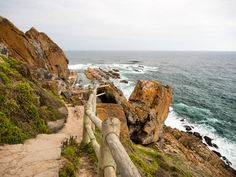 Mossel Bay Parks, Garden Route, Wale, Roadtrip, Africa, Outdoor, Trips, Cape Town, Tours