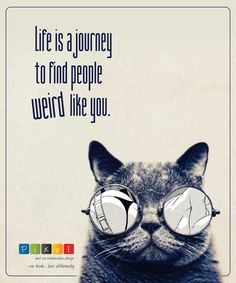 #uniqueisgood #lovelife #beyourownboss #gamechangers #stylematters #quoteoftheday #life #journey #weird #perfectinyourownway #ipixels