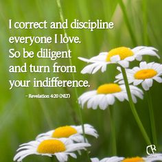 I correct and discipline everyone I love. So be diligent and turn from your indifference. - Rev. 3:19 #NLT #Bible verse   CrossRiverMedia.com