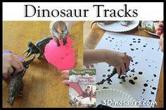 Dinosaur Tracks from 3 Dinosaurs