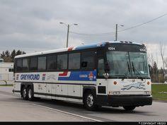 Buses, Diecast, Trucks, Busses, Truck