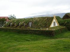 In Iceland, the natural wood supply of birch isn't strong enough to build houses from, so they use stone and turf! This is absolutely perfect.