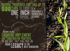 Taking care of soil is a necessity on our farms! Agriculture Quotes, Farming Quotes, Agriculture News, Farm Facts, Summer Beach Quotes, Soil Conservation, Crush Quotes, Quotes Quotes, Ocean Quotes