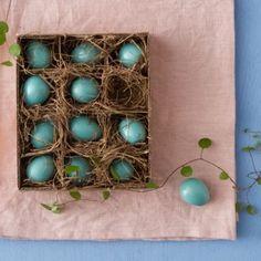 Faux Robin Eggs in Sale SHOP Gardening at Terrain
