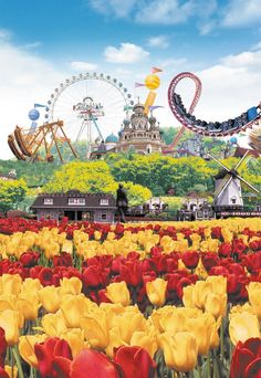Everland theme park korea - - Yahoo Search Results