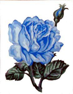 A pretty flower picture.