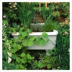 old sink in garden - Modern Belfast Sink Garden Feature, Belfast Sink Pond, Garden Bathtub, Garden Sink, Water Garden, Back Gardens, Outdoor Gardens, Courtyard Gardens, Container Pond