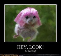 Hey look! It's Nicki Minaj!