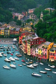 Porto Fino, Italy