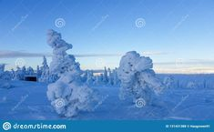 Photo about Blue hour winter landscape. Winter wonderland in Hedmark county Norway. Frozen trees on hedmarksvidda. Image of blue, winter, county - 131431388 Blue Hour, Winter Wonderland, Norway, Mount Rushmore, Frozen, Trees, Europe, Stock Photos