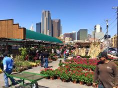 The Ruibal's at the Dallas Farmers Market may be swamped, but the East Dallas location is a sweet spot for Mother's Day. Dallas Farmers Market, Farmers Market Recipes, Flowers For You, The Way Home, The Locals, Things To Do, Dolores Park, Street View, Marketing