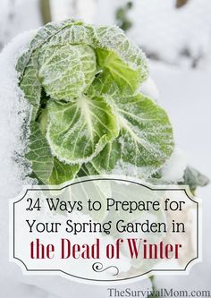 24 Ways to Prepare for Your Spring Garden in the Dead of Winter