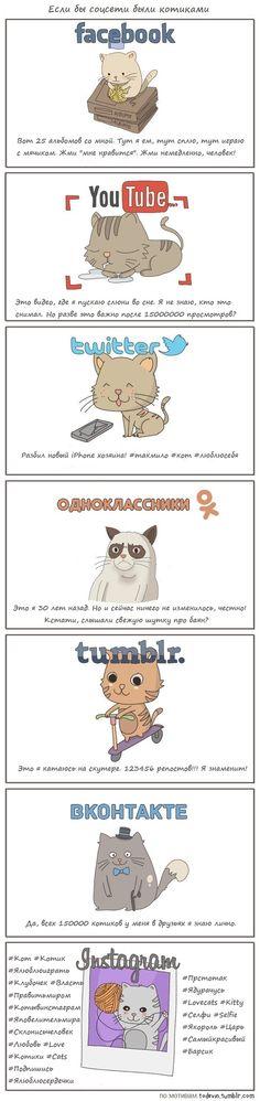 Если бы соцсети были котиками