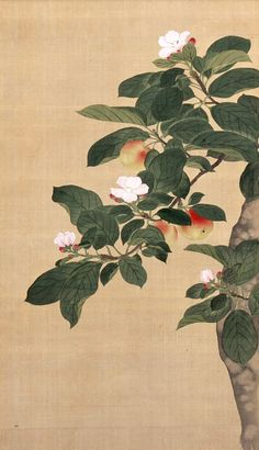 Aichi Prefectural Museum of Art Japanese Art Styles, Japanese Prints, Hiroshi Yoshida, China Art, Still Life Art, Apple Tree, Chinese Painting, Art Museum, Plant Leaves
