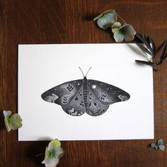 Monarch butterfly art - 5x7 print - Black and white.