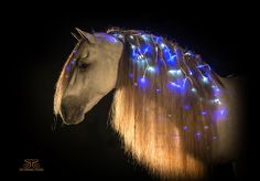 Horse mane with Christmas lights...hide the chords a little more and I love it!