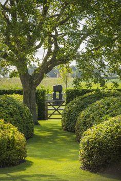 Landscape garden by Studio Verde Outdoor Landscaping, Outdoor Gardens, Landscape Architecture, Landscape Design, Garden Cottage, Garden Pool, Plantation, Garden Gates, Dream Garden