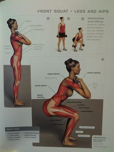 LEGS/HIPS: squat  (ant  post thigh muscles, gluteus maximus)