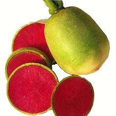 Cheap seeds direct, Buy Quality seeds exporters directly from China seeds wedding Suppliers: Hot Selling Rare Green Paper Red Radish Seeds Fruits and Vegetables Balcony Green Organic Potted Plant Radish Seeds Fruits And Vegetables Pictures, Fruit Picture, Green Organics, Green Paper, Planting Seeds, Garden Supplies, Seed Oil, Potted Plants, Exotic