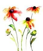 Aquarel illustratie met prachtige bloemen photo