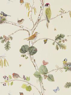 Woodland Chorus by Sanderson - Cream - Wallpaper : Wallpaper Direct Multicoloured Wallpaper, Animal Delivery, Cream Wallpaper, Bird Wallpaper Bedroom, Bathroom Wallpaper, Print Wallpaper, Wallpaper Roll, Blue Wallpapers, Designer Wallpaper
