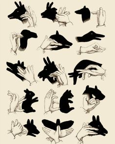 shadow puppets. For all of my friends and family and new England that have no power due to Sandy.