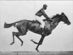 "In 1878 Eadweard Muybridge photographed a horse named ""Occident"" in fast motion using a series of 12 stereoscopic cameras. The first experience successfully took place on June 11 at the Palo Alto farm in California. The cameras were arranged along a track parallel to the horse's, and each of the camera shutters was controlled by a trip wire which was triggered by the horse's hooves."