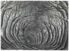 Illustration by Stanley Donwood for the book Holloway http://www.caughtbytheriver.net/2012/06/holloway/#