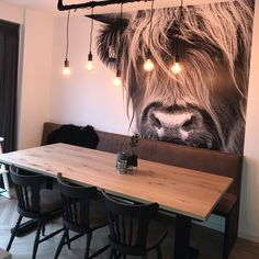 Cow Photos, Cow Pictures, Dining Room Design, Interior Design Living Room, Western Decor, Home Hacks, Black Wood, Kitchen Interior, Ideal Home
