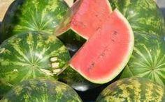 verdura e frutta contro il caldo. meglio del condizionatore lo sapete che frutta e verdura sono meglio del condizionatore? Il monito viene dalla Cia - Agricolt frutta anguria melone news