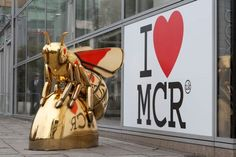 Huge golden honey bee spotted in Manchester city centre - I Love Manchester I Love Manchester, Manchester Central, Manchester City Centre, Different Bees, Bee City, The Devil's Advocate, The Cheshire, Salford, Coat Of Arms