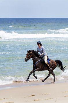 Au galop sur les plages Australiennes #chevaldaventure #cheval