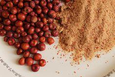 Manzanita-Sugar-Berries-blog